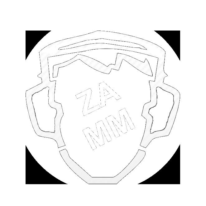 Concert avec Zarzavat