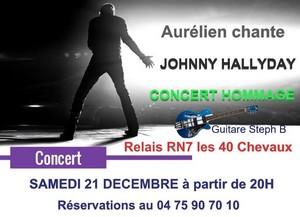 "Hommage ""Aurélien Luckyday chante Johnny Hallyday"""