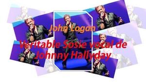 Repas / Concert avec Sosie Vocal de Johnny Hallyday 'John Logan'