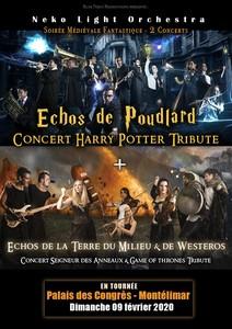 Concert Seigneur des Anneaux, GOT et Harry Potter