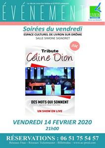 Des Mots qui sonnent 'Tribute Céline Dion'