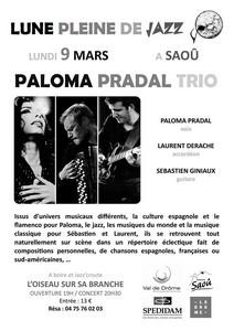 Paloma Pradal Trio (Flamenco / Hip hop / Electro / Musique du Monde)